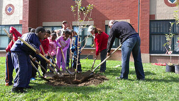 Students at Ronald Brown Academy plant a tree during the 2012 Green Apple Day of Service.