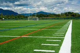 iStock 000003990428XSmall football field