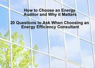 20Q Energy Auditor cover.jpg